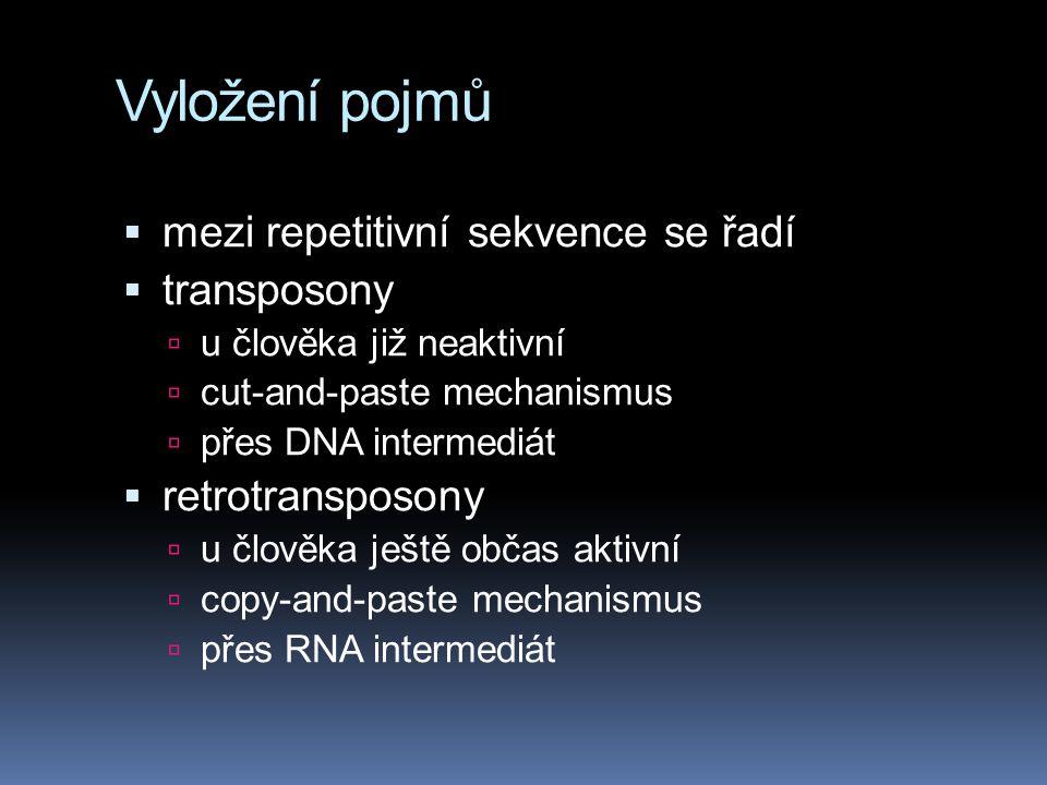 Vyložení pojmů  mezi repetitivní sekvence se řadí  transposony  u člověka již neaktivní  cut-and-paste mechanismus  přes DNA intermediát  retrot