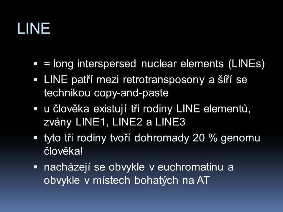 LINE  = long interspersed nuclear elements (LINEs)  LINE patří mezi retrotransposony a šíří se technikou copy-and-paste  u člověka existují tři rod