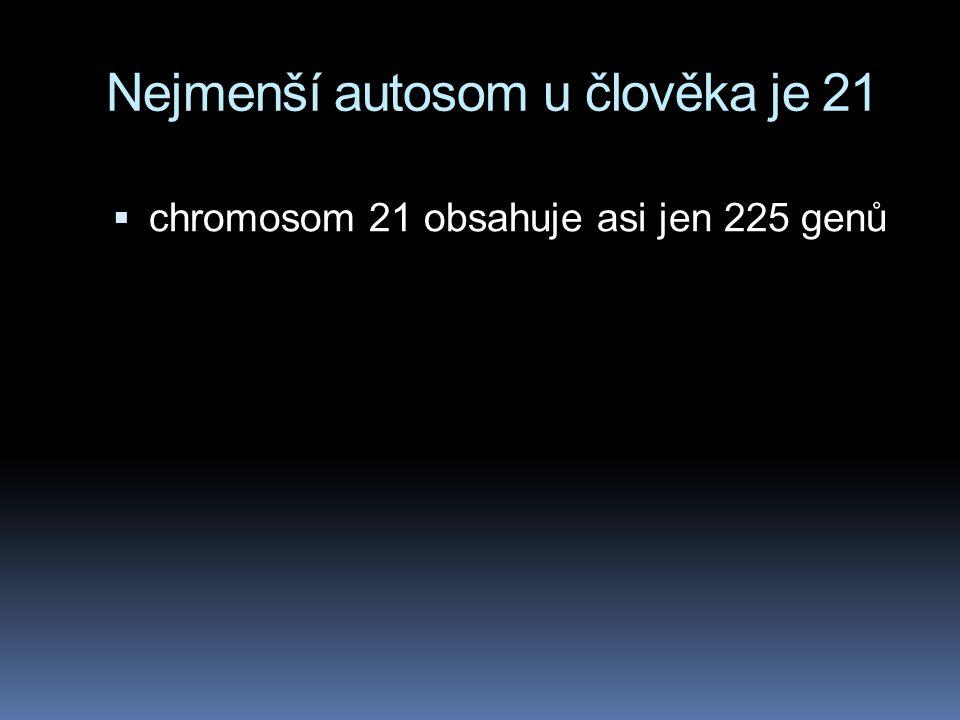 Nejmenší autosom u člověka je 21  chromosom 21 obsahuje asi jen 225 genů