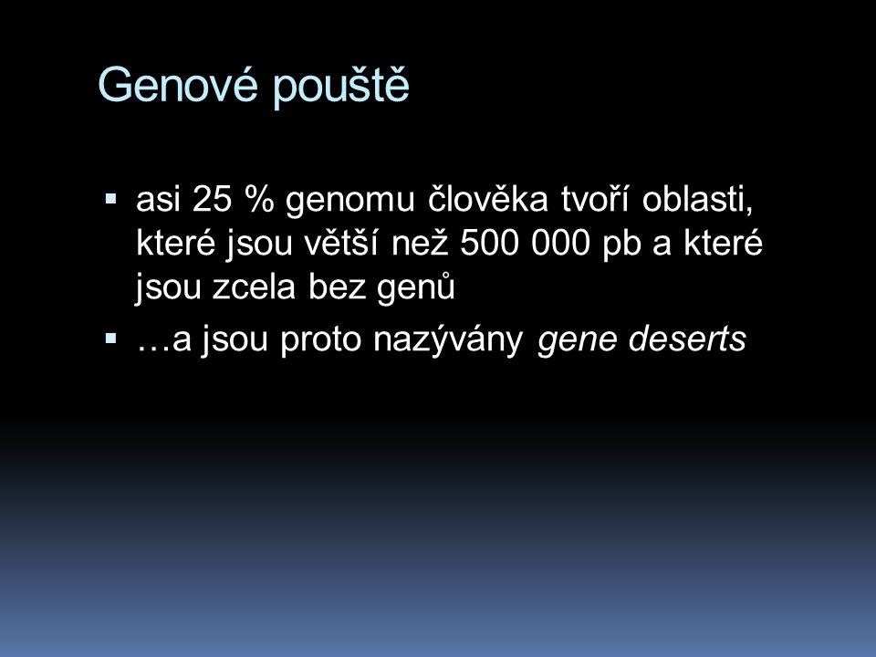 Genové pouště  asi 25 % genomu člověka tvoří oblasti, které jsou větší než 500 000 pb a které jsou zcela bez genů  …a jsou proto nazývány gene deser
