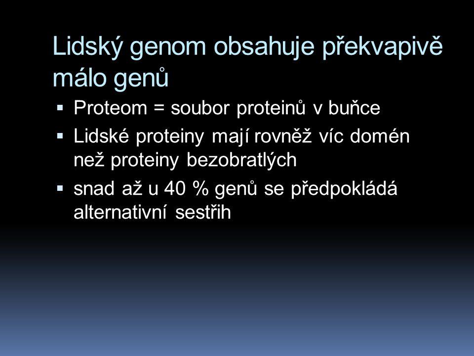Lidský genom obsahuje překvapivě málo genů  Proteom = soubor proteinů v buňce  Lidské proteiny mají rovněž víc domén než proteiny bezobratlých  sna