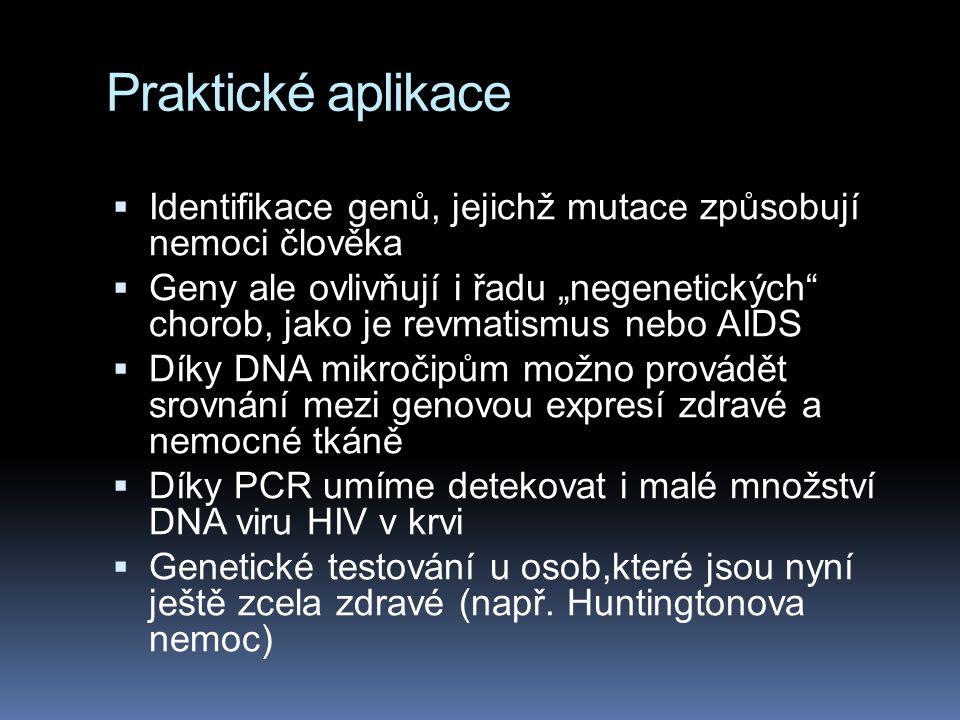 """Praktické aplikace  Identifikace genů, jejichž mutace způsobují nemoci člověka  Geny ale ovlivňují i řadu """"negenetických"""" chorob, jako je revmatismu"""