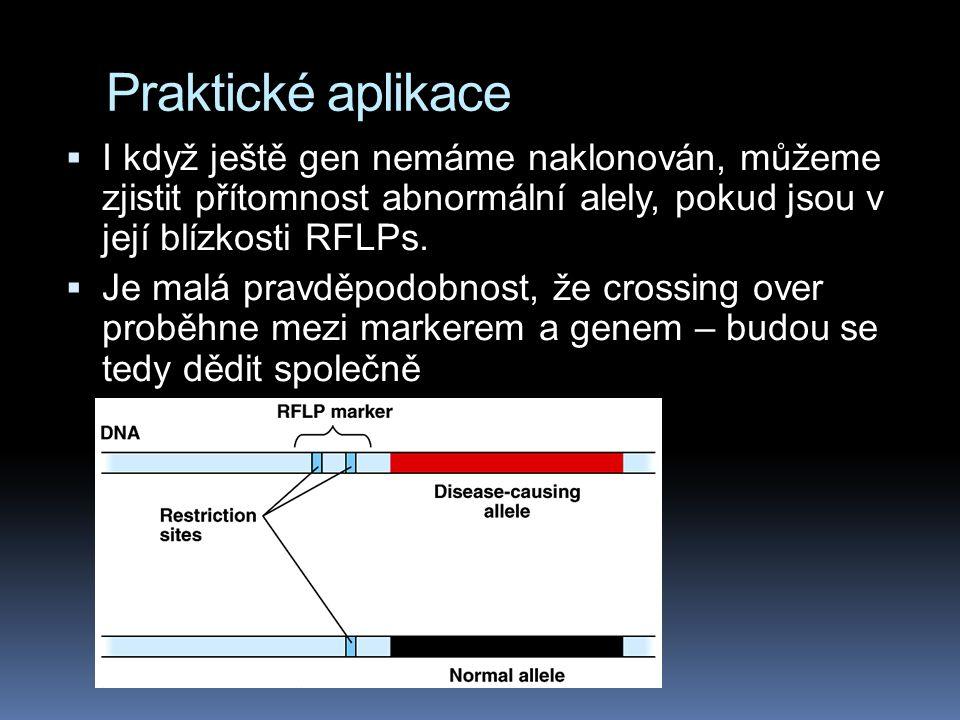 Praktické aplikace  I když ještě gen nemáme naklonován, můžeme zjistit přítomnost abnormální alely, pokud jsou v její blízkosti RFLPs.  Je malá prav
