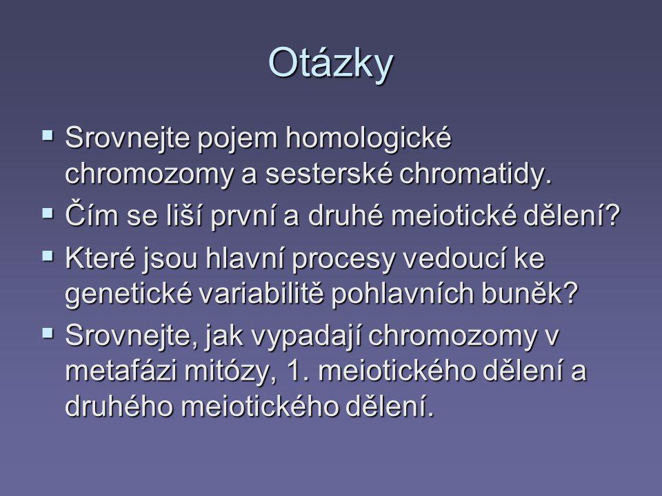 Otázky  Srovnejte pojem homologické chromozomy a sesterské chromatidy.  Čím se liší první a druhé meiotické dělení?  Které jsou hlavní procesy vedo