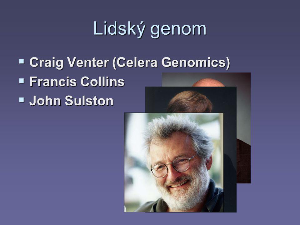 Lidský genom  Craig Venter (Celera Genomics)  Francis Collins  John Sulston