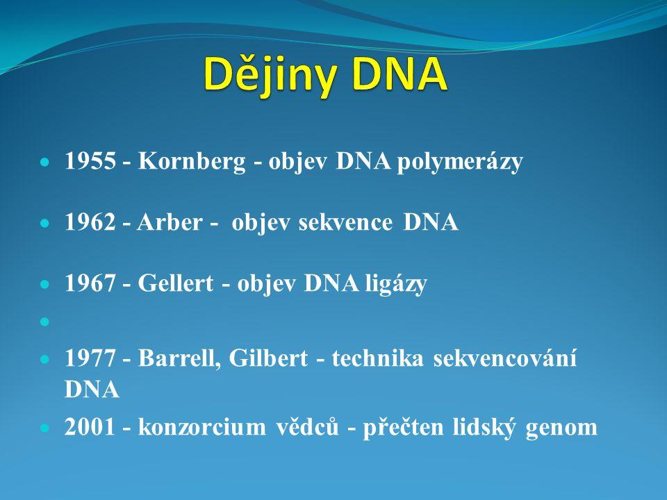  1955 - Kornberg - objev DNA polymerázy  1962 - Arber - objev sekvence DNA  1967 - Gellert - objev DNA ligázy   1977 - Barrell, Gilbert - technik