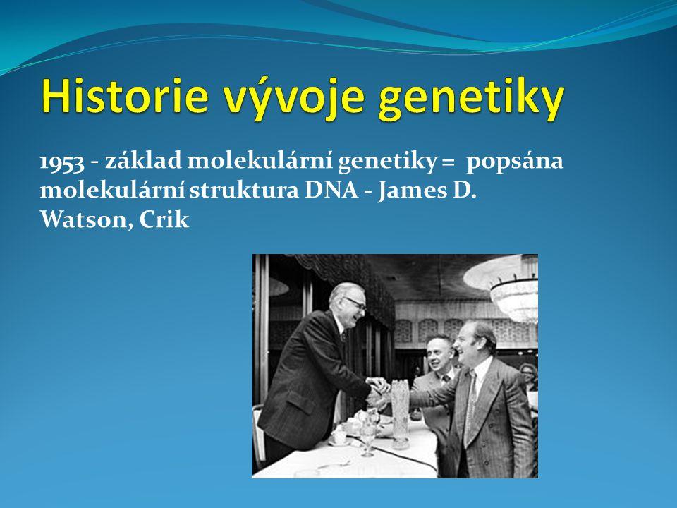 1953 - základ molekulární genetiky = popsána molekulární struktura DNA - James D. Watson, Crik