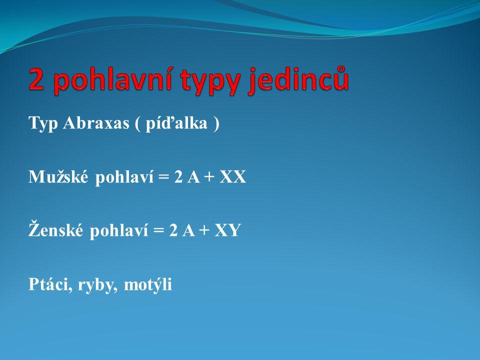 Typ Abraxas ( píďalka ) Mužské pohlaví = 2 A + XX Ženské pohlaví = 2 A + XY Ptáci, ryby, motýli