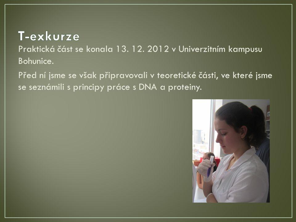 Praktická část se konala 13. 12. 2012 v Univerzitním kampusu Bohunice.