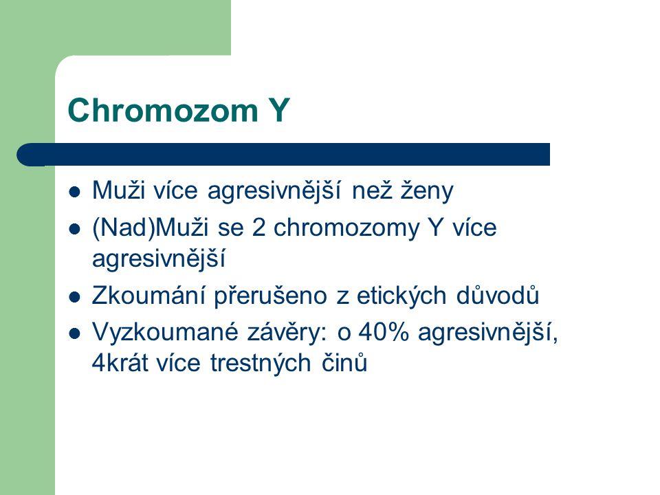 Chromozom Y Muži více agresivnější než ženy (Nad)Muži se 2 chromozomy Y více agresivnější Zkoumání přerušeno z etických důvodů Vyzkoumané závěry: o 40