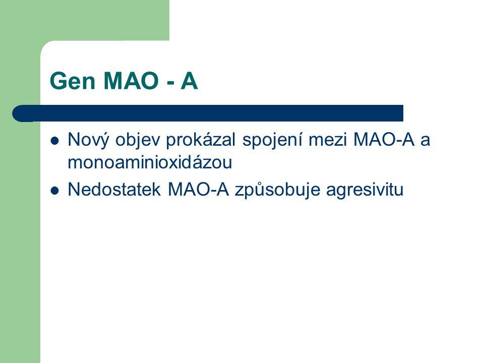 Gen MAO - A Nový objev prokázal spojení mezi MAO-A a monoaminioxidázou Nedostatek MAO-A způsobuje agresivitu