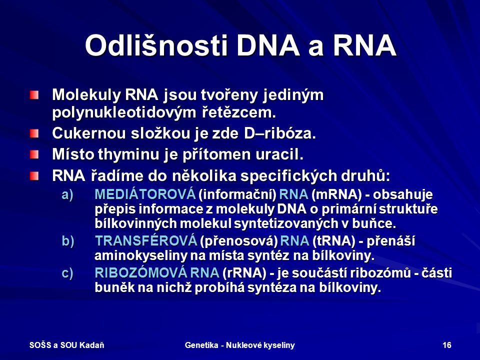 SOŠS a SOU Kadaň Genetika - Nukleové kyseliny 15 Komplementární báze RNA Adenin Uracil Dvojná vodíková vazba Guanin Cytosin Trojná vodíková vazba DNA