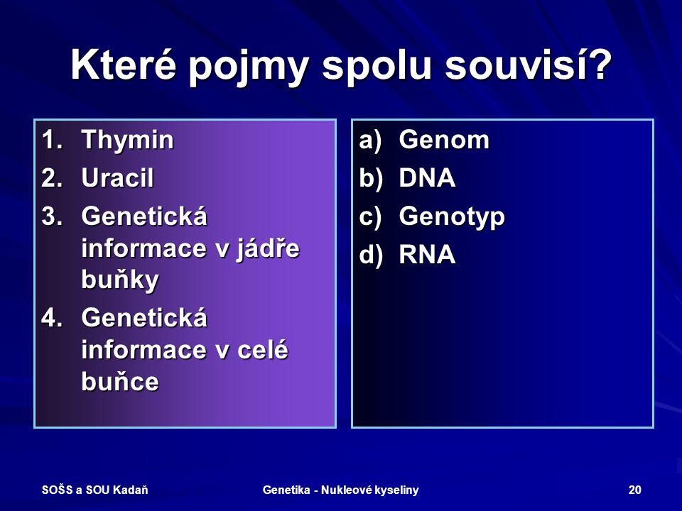 SOŠS a SOU Kadaň Genetika - Nukleové kyseliny 19 Octomilka obecná Drosophily,