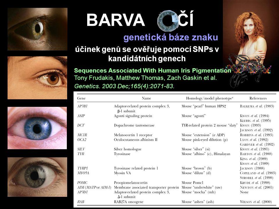 BARVA OČÍ účinek genů se ověřuje pomocí SNPs v kandidátních genech Sequences Associated With Human Iris Pigmentation Tony Frudakis, Matthew Thomas, Za