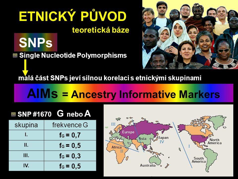 ETNICKÝ PŮVOD teoretická báze Single Nucleotide Polymorphisms SNPs malá část SNPs jeví silnou korelaci s etnickými skupinami AIMs = Ancestry Informati
