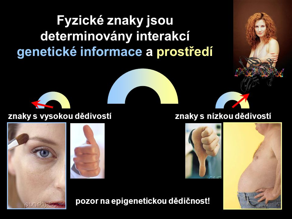 Fyzické znaky jsou determinovány interakcí genetické informace a prostředí pozor na epigenetickou dědičnost! znaky s vysokou dědivostíznaky s nízkou d