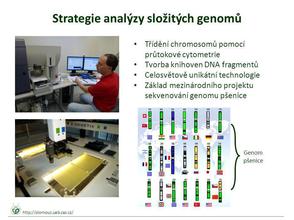 Strategie analýzy složitých genomů Genom pšenice Třídění chromosomů pomocí průtokové cytometrie Tvorba knihoven DNA fragmentů Celosvětově unikátní technologie Základ mezinárodního projektu sekvenování genomu pšenice http://olomouc.ueb.cas.cz/