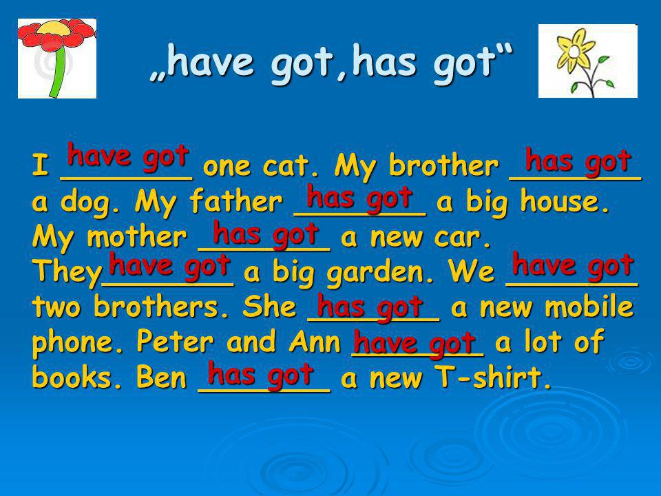 """have got,has got"" I _______ one cat. My brother _______ a dog. My father _______ a big house. My mother _______ a new car. They_______ a big garden."