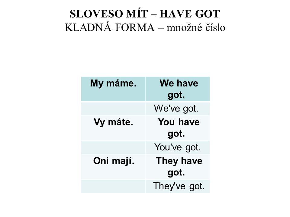 SLOVESO MÍT – HAVE GOT KLADNÁ FORMA – množné číslo My máme. We have got. We've got. Vy máte. You have got. You've got. Oni mají. They have got. They'v