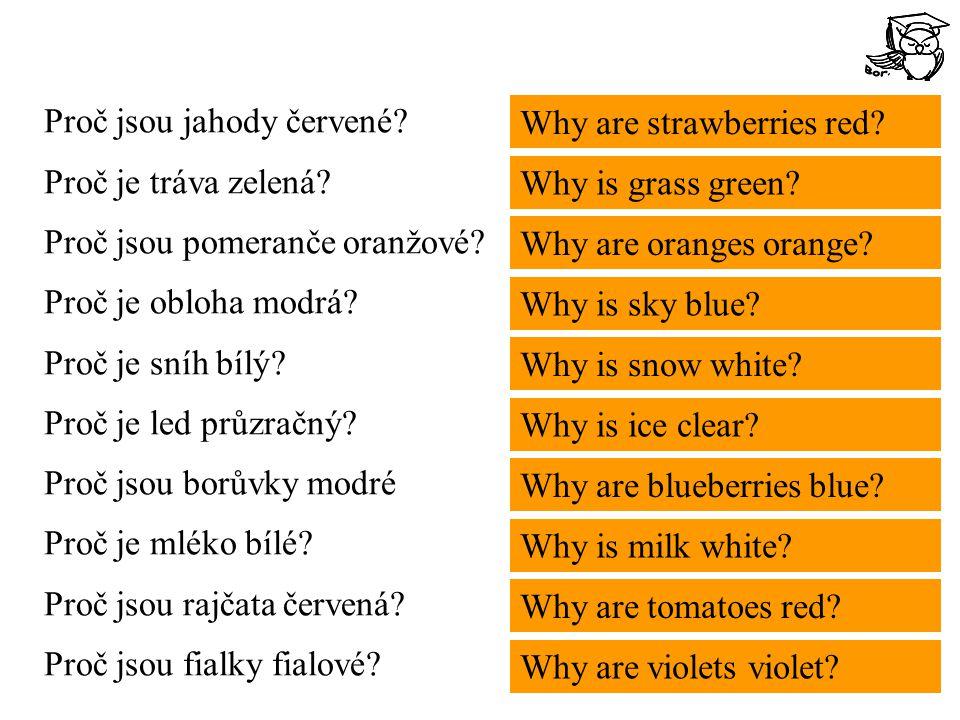 Proč jsou jahody červené. Proč je tráva zelená. Proč jsou pomeranče oranžové.