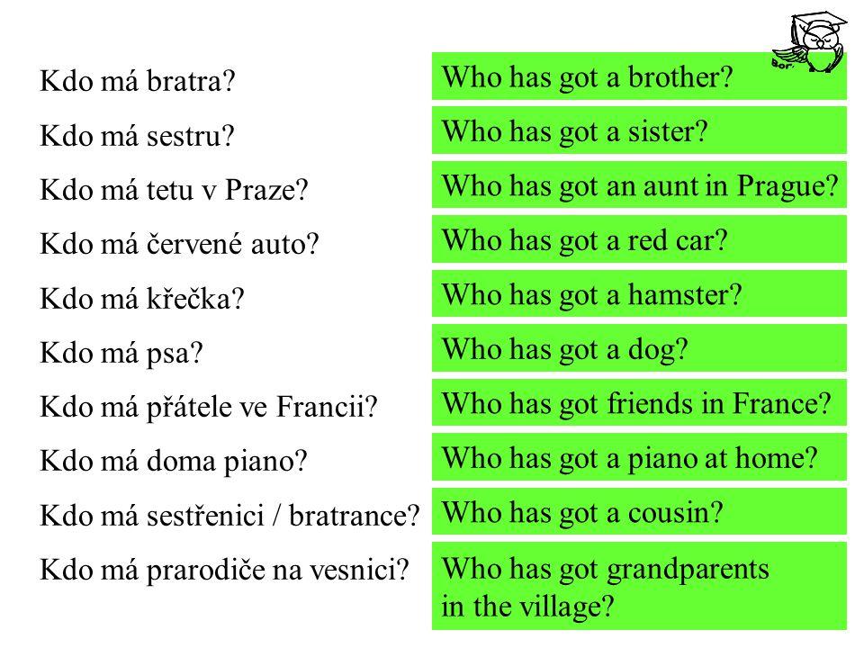 Kdo má bratra? Kdo má sestru? Kdo má tetu v Praze? Kdo má červené auto? Kdo má křečka? Kdo má psa? Kdo má přátele ve Francii? Kdo má doma piano? Kdo m