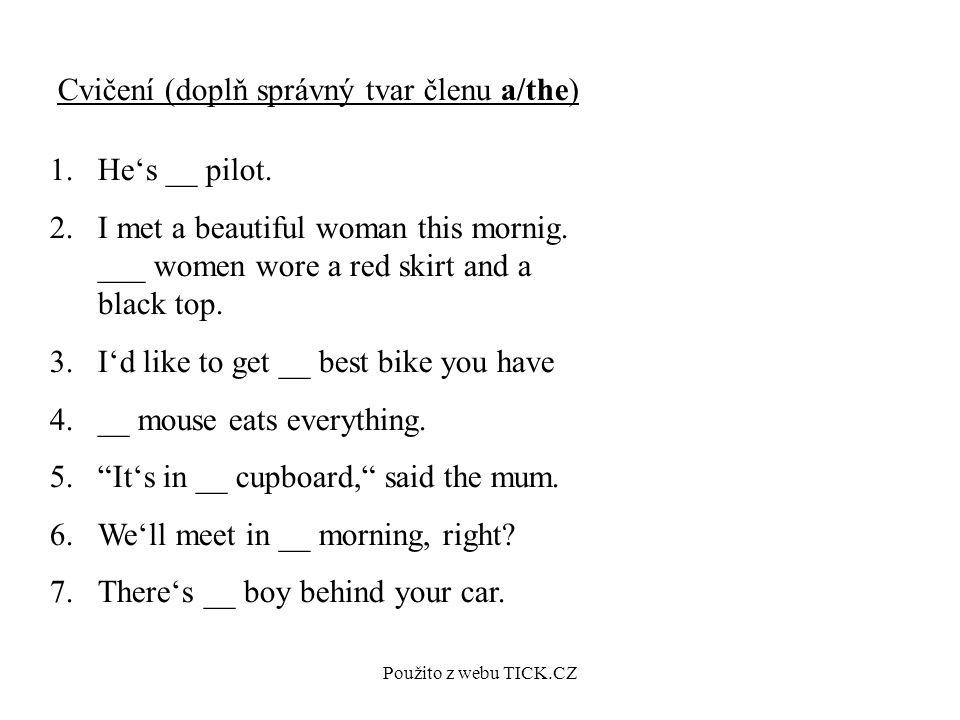 Použito z webu TICK.CZ Cvičení (doplň správný tvar členu a/the) 1.He's __ pilot.