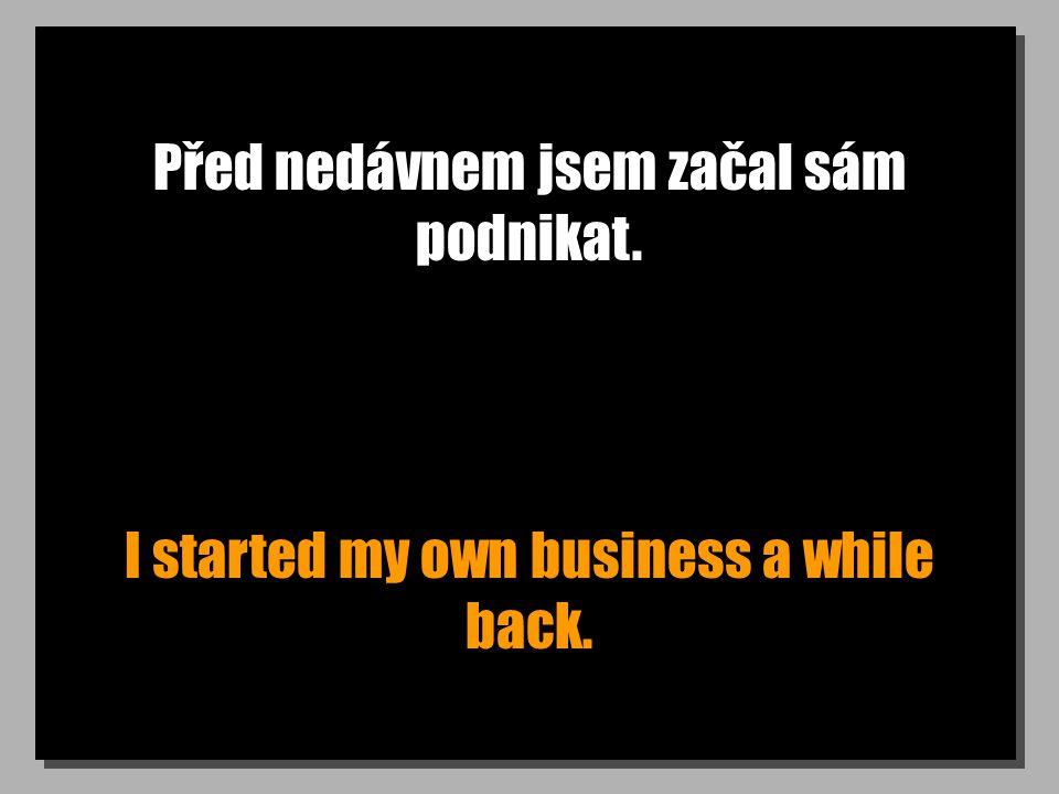 Před nedávnem jsem začal sám podnikat. I started my own business a while back.