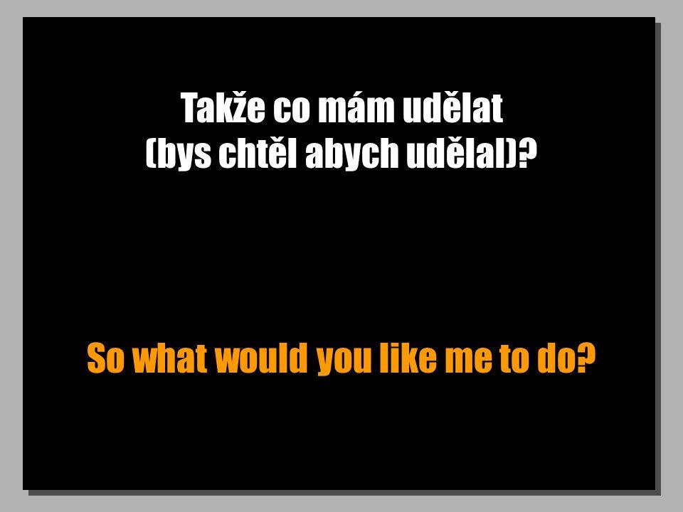 Takže co mám udělat (bys chtěl abych udělal)? So what would you like me to do?