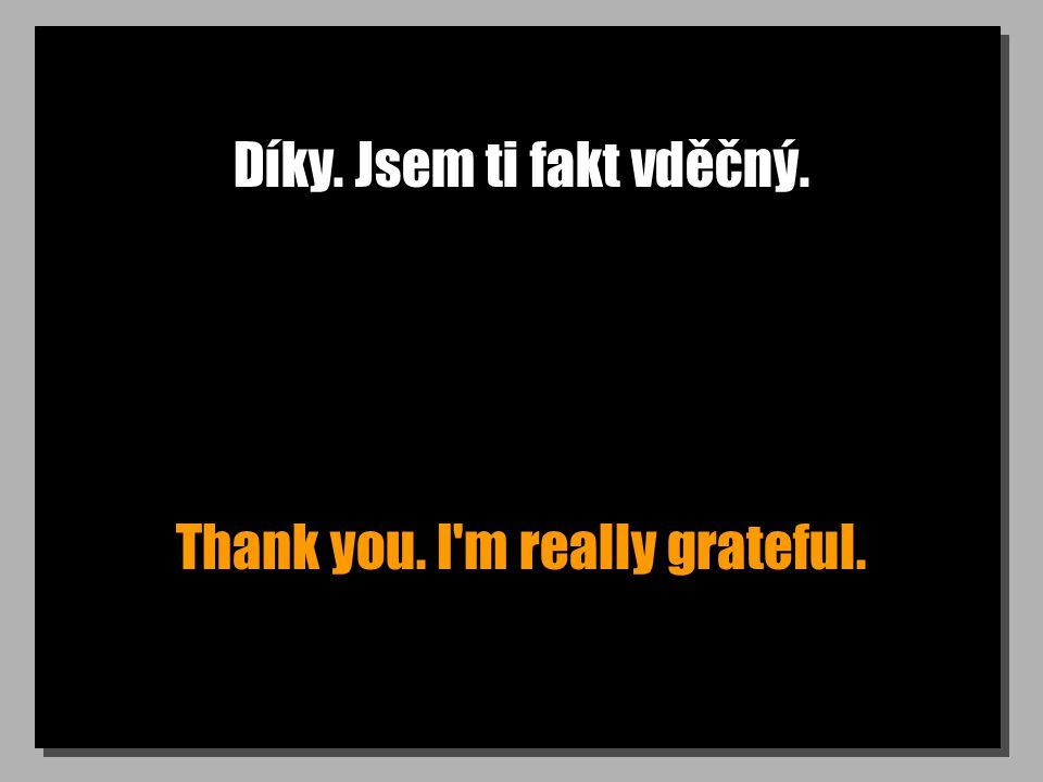 Díky. Jsem ti fakt vděčný. Thank you. I'm really grateful.