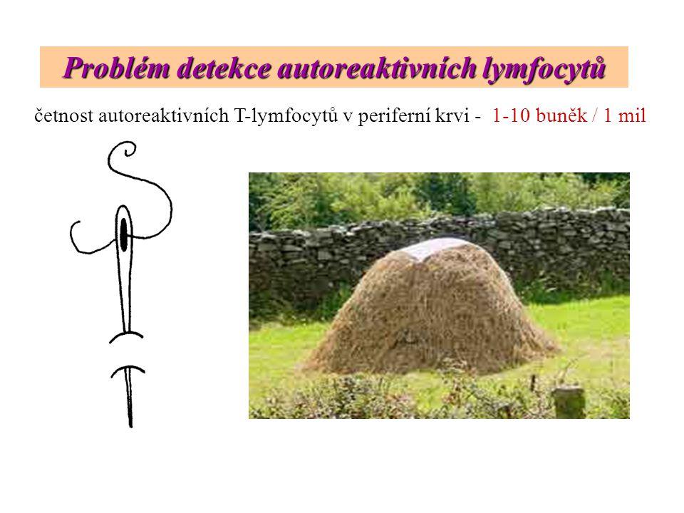 Problém detekce autoreaktivních lymfocytů četnost autoreaktivních T-lymfocytů v periferní krvi - 1-10 buněk / 1 mil