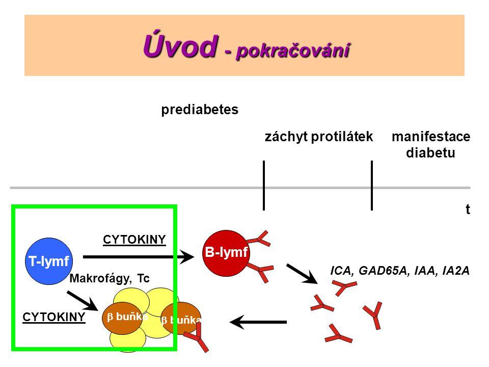 Úvod - pokračování T-lymf  buňka B-lymf Makrofágy, Tc prediabetes záchyt protilátekmanifestace diabetu ICA, GAD65A, IAA, IA2A CYTOKINY t