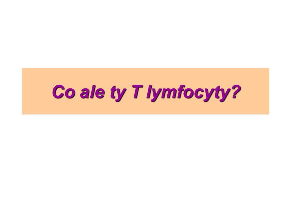 Co ale ty T lymfocyty?
