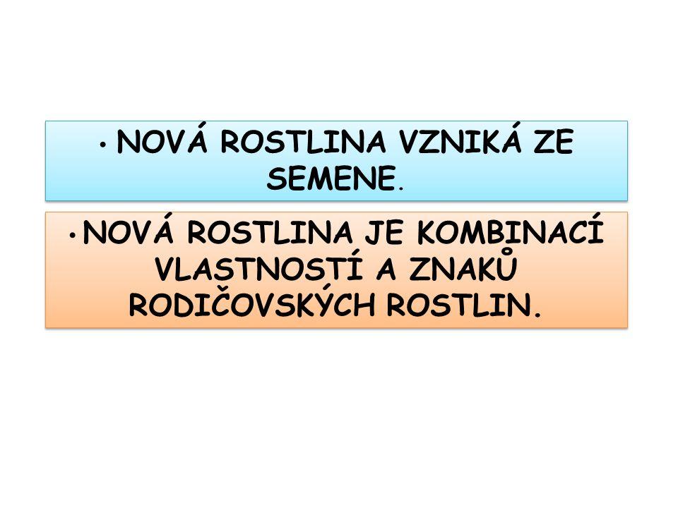 Seznam použité literatury a pramenů: ČERNÍK, V.a kol.