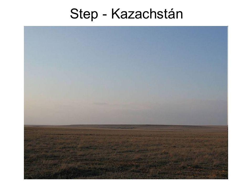 Step - Kazachstán