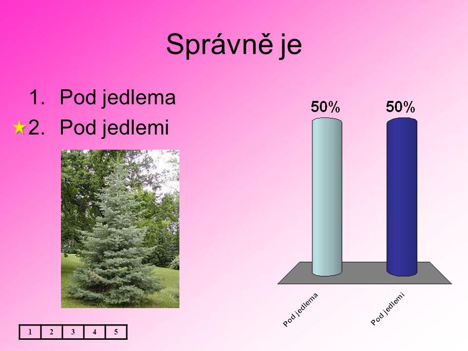 Téma: Český jazyk - Podstatná jména - rod ženský - procvičování 4.