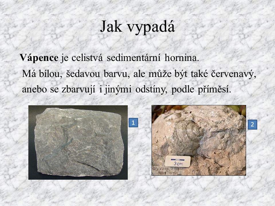 Jak vypadá Vápence je celistvá sedimentární hornina. Má bílou, šedavou barvu, ale může být také červenavý, anebo se zbarvují i jinými odstíny, podle p