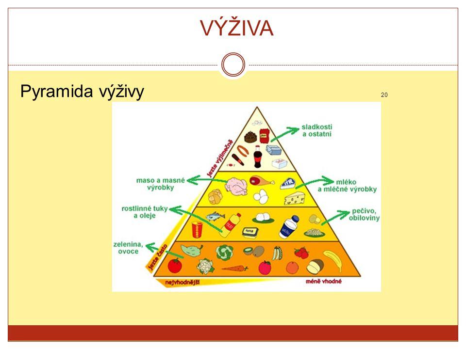 VÝŽIVA Pyramida výživy 20