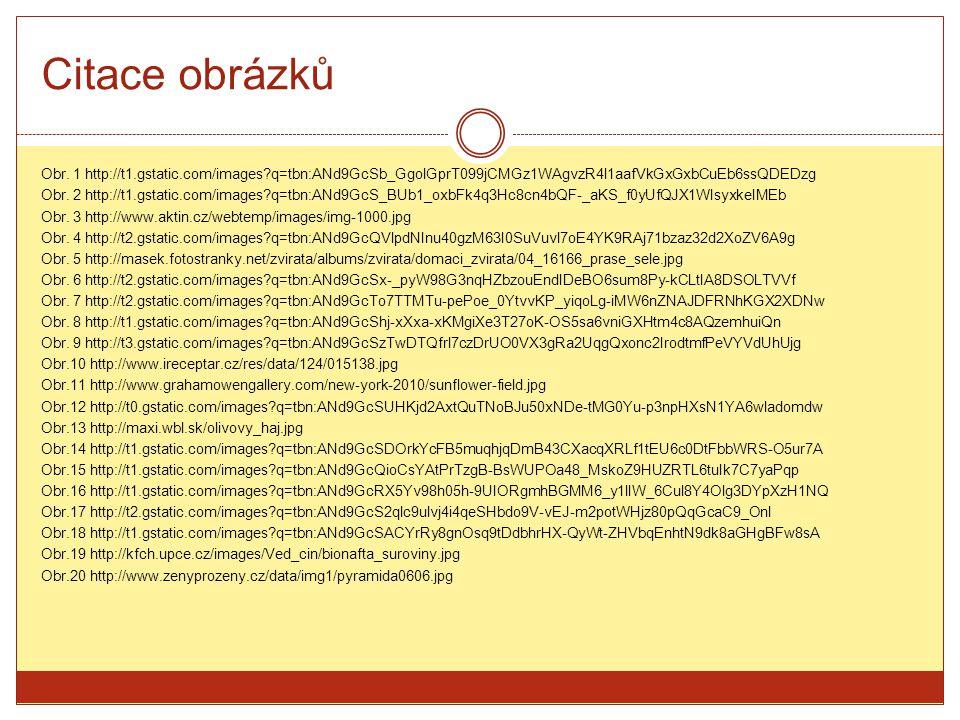 Citace obrázků Obr. 1 http://t1.gstatic.com/images?q=tbn:ANd9GcSb_GgolGprT099jCMGz1WAgvzR4l1aafVkGxGxbCuEb6ssQDEDzg Obr. 2 http://t1.gstatic.com/image