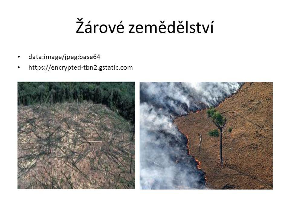 Usedlé zemědělství Využití přírodních hnojiv, zakládání usedlostí.