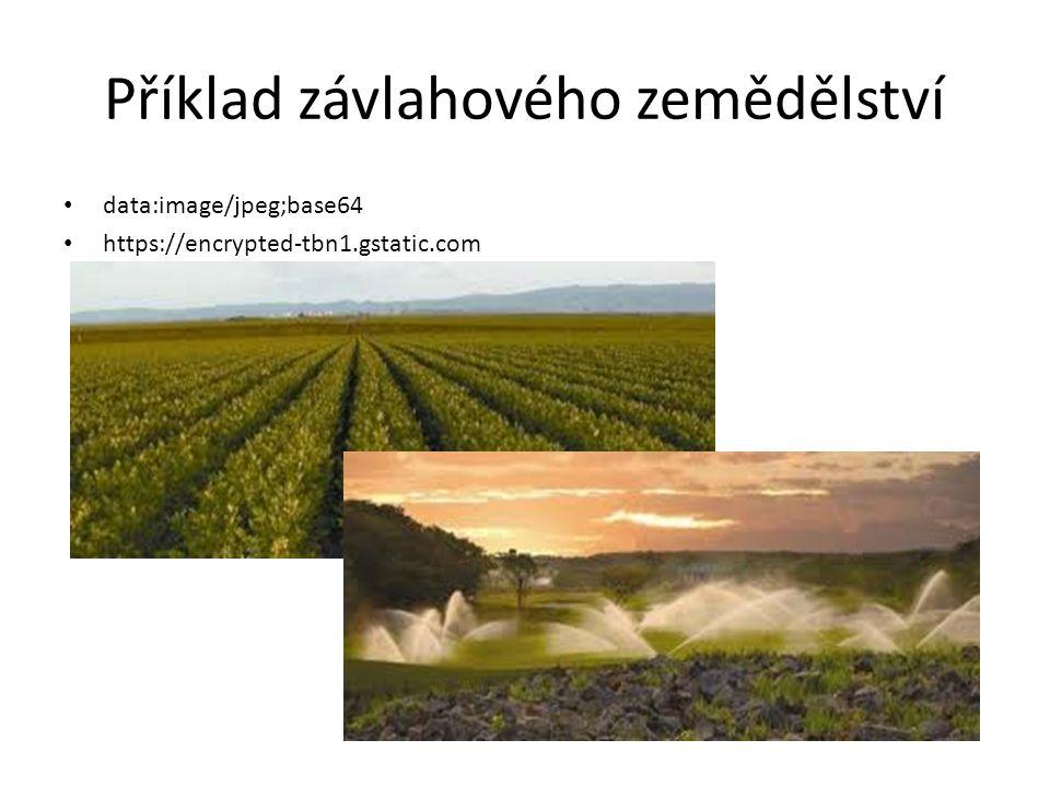 Otázky k opakování Jaký je hlavní cíl zemědělství .