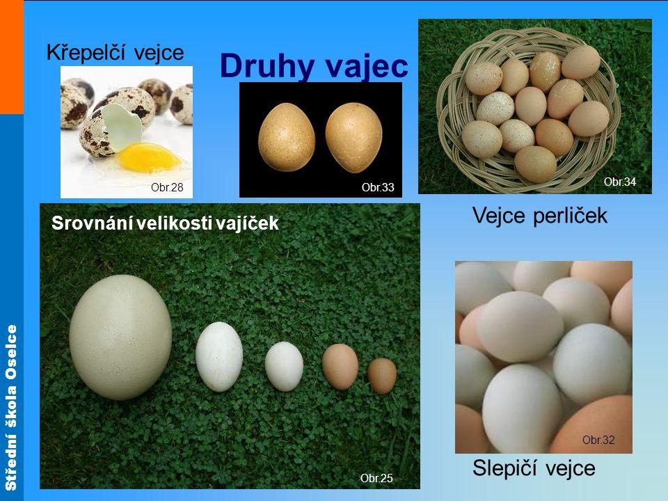 Střední škola Oselce Obr.25 Druhy vajec Obr.33 Obr.32 Obr.34 Slepičí vejce Vejce perliček Křepelčí vejce Srovnání velikosti vajíček Obr.28