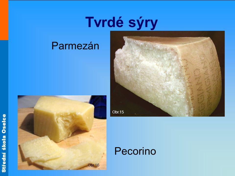 Střední škola Oselce Tvrdé sýry Parmezán Obr.15 Pecorino Obr.16