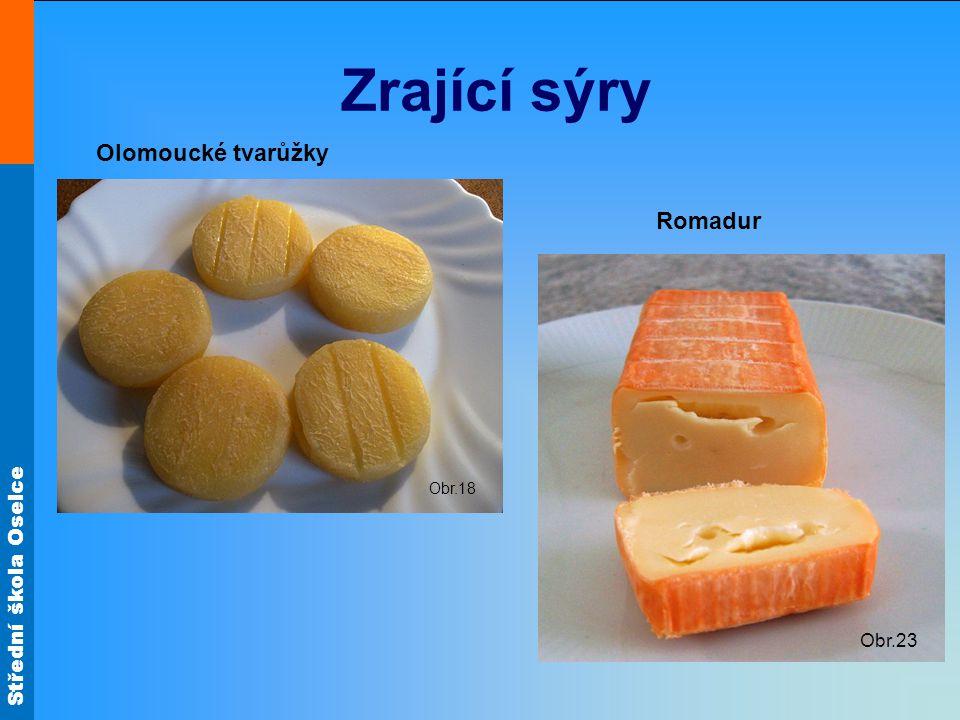 Střední škola Oselce Zrající sýry Obr.18 Obr.23 Olomoucké tvarůžky Romadur