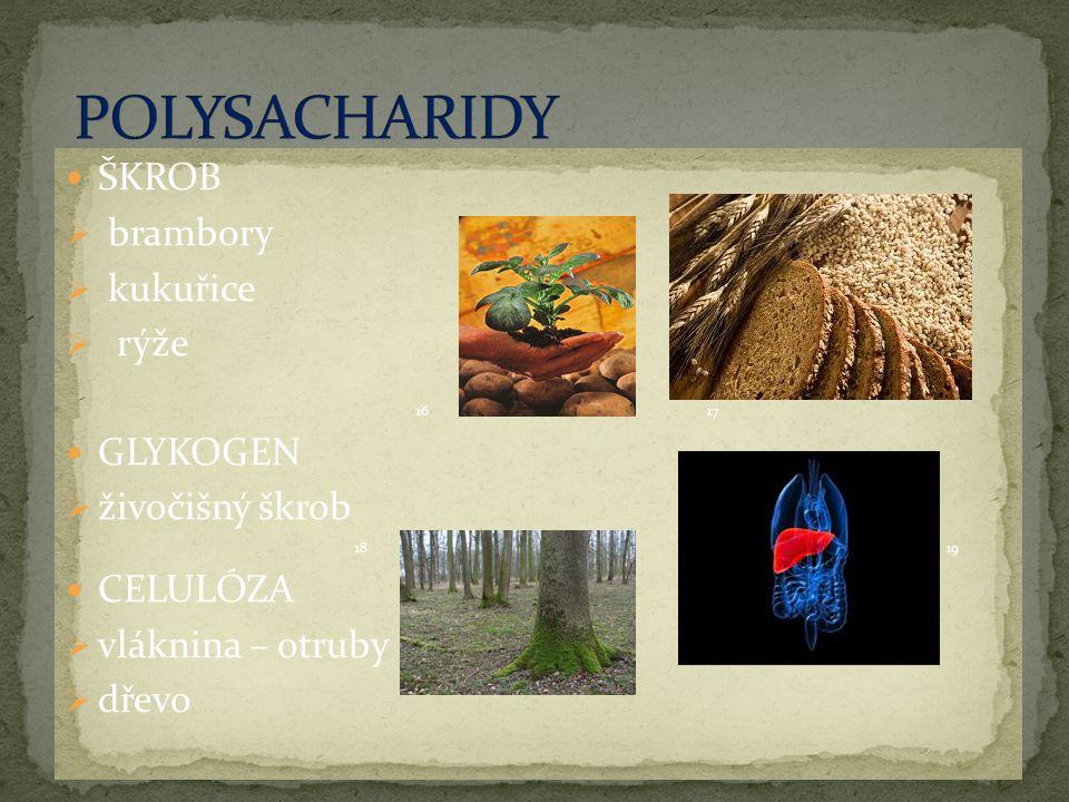 ŠKROB  brambory  kukuřice  rýže 1617 GLYKOGEN  živočišný škrob 18 19 CELULÓZA  vláknina – otruby  dřevo