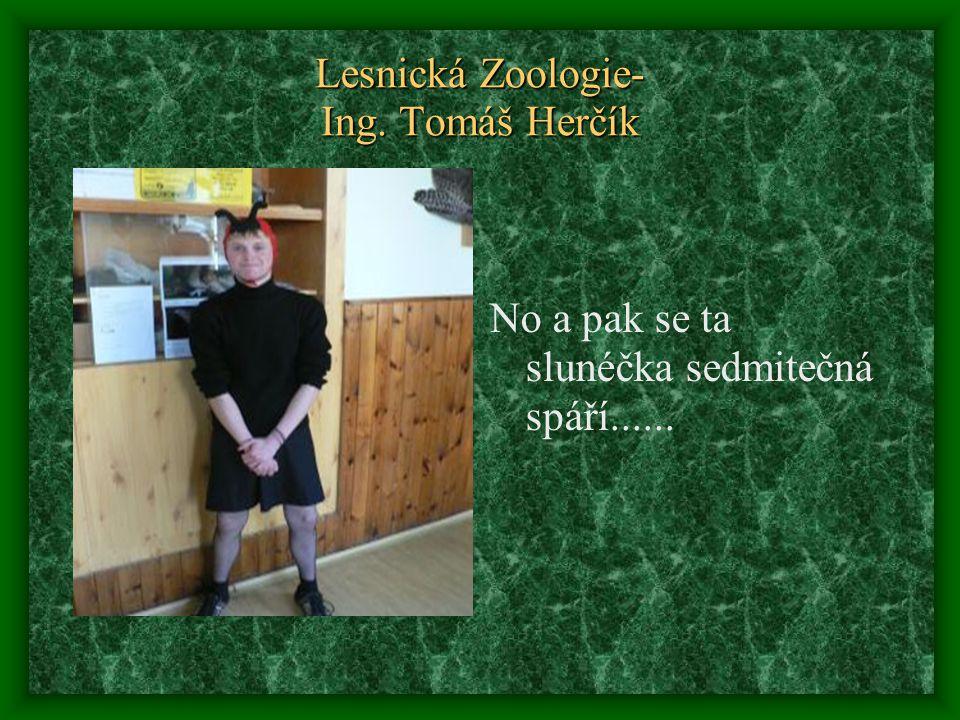 Lesnická Zoologie- Ing. Tomáš Herčík No a pak se ta slunéčka sedmitečná spáří......