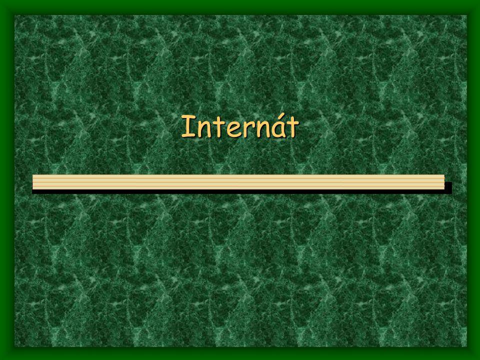Internát