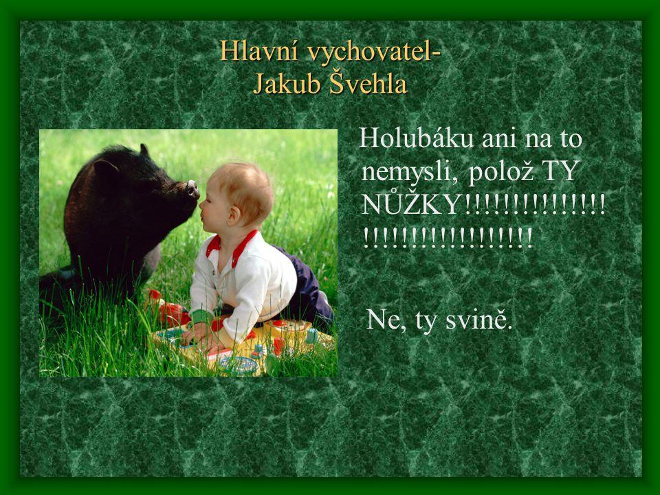 Hlavní vychovatel- Jakub Švehla Holubáku ani na to nemysli, polož TY NŮŽKY!!!!!!!!!!!!!!! !!!!!!!!!!!!!!!!!! Ne, ty svině.
