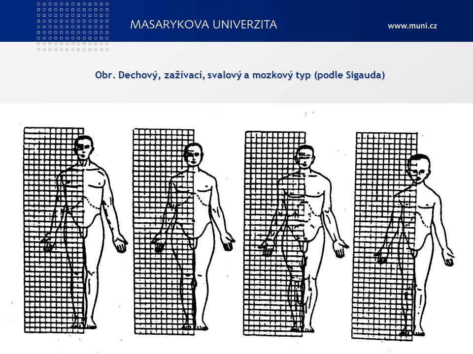8. Přehled typologických škol9 Obr. Dechový, zažívací, svalový a mozkový typ (podle Sigauda)