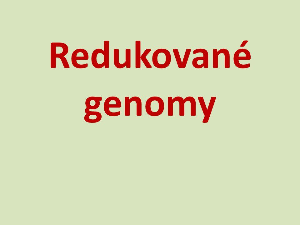 Redukované genomy