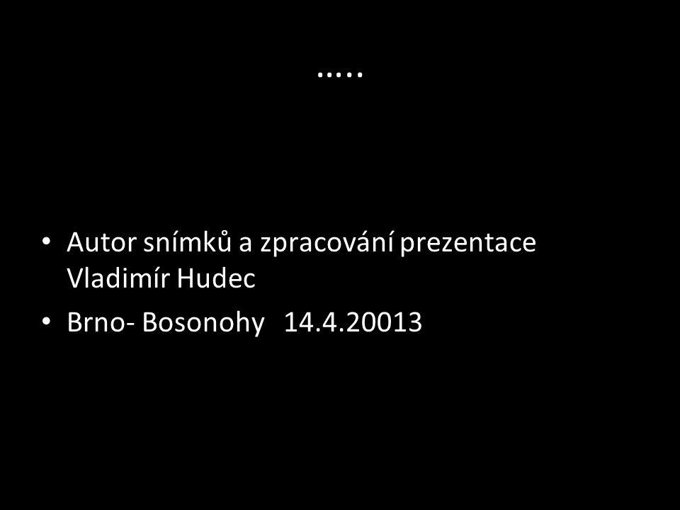 …… Setkání heligonkářů v bosonožské ORLOVNĚ bylo velmi pěkné.